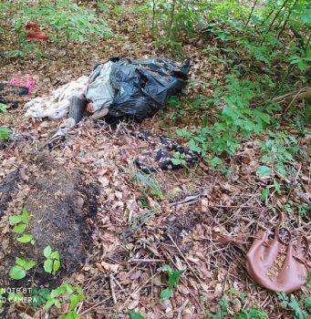 Illegale Müllentsorgung in der Altendiezer Gemarkung